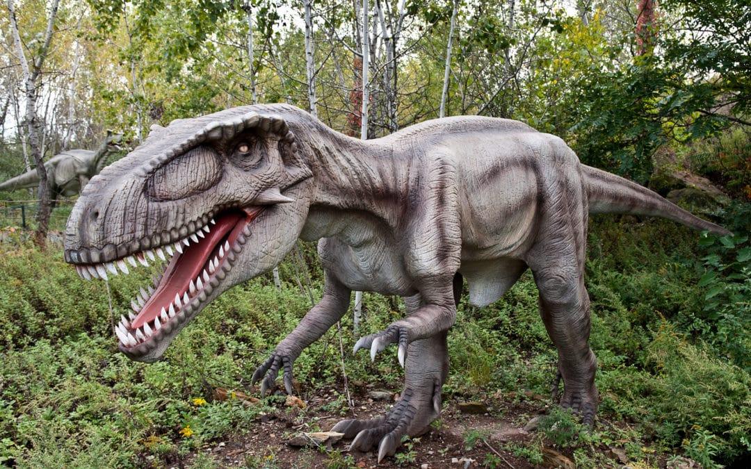 Field Station: Dinosaurs